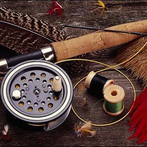 Охотничьи и рыболовные магазины Инжавино